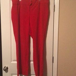 Colored dress pants